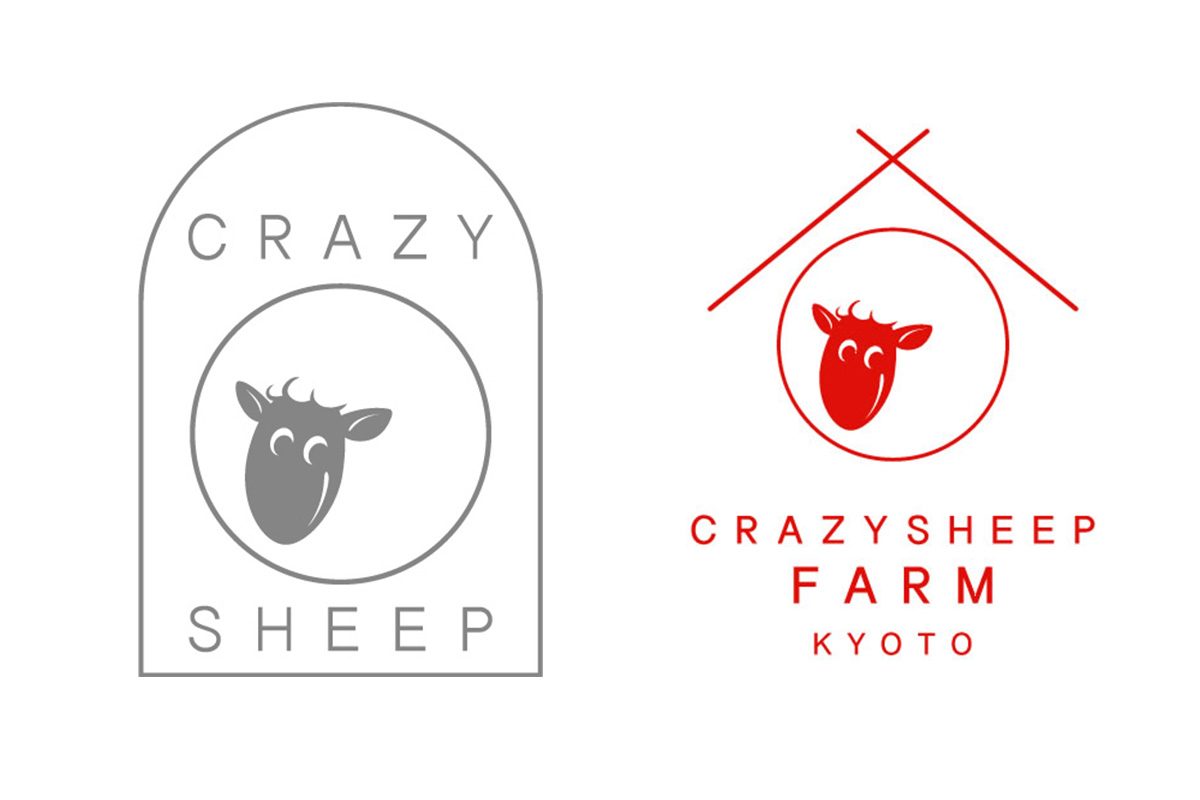 crazysheep crazysheepfarm